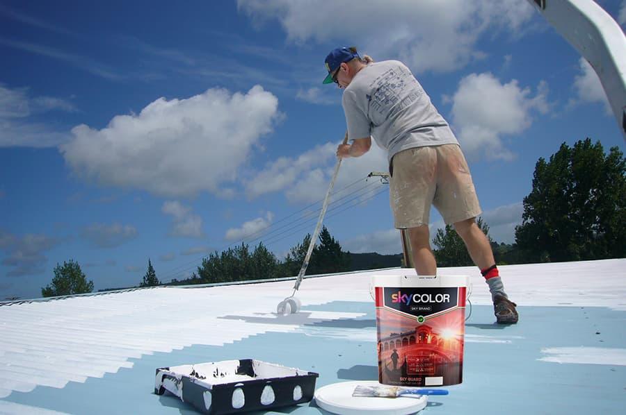 Top 2 thương hiệu sơn chống nóng tốt nhất hiện nay
